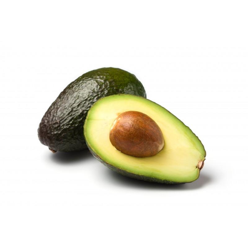 Avocado Suppliers & Avocado Products