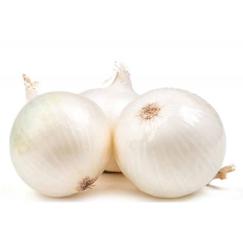 Onion Suppliers