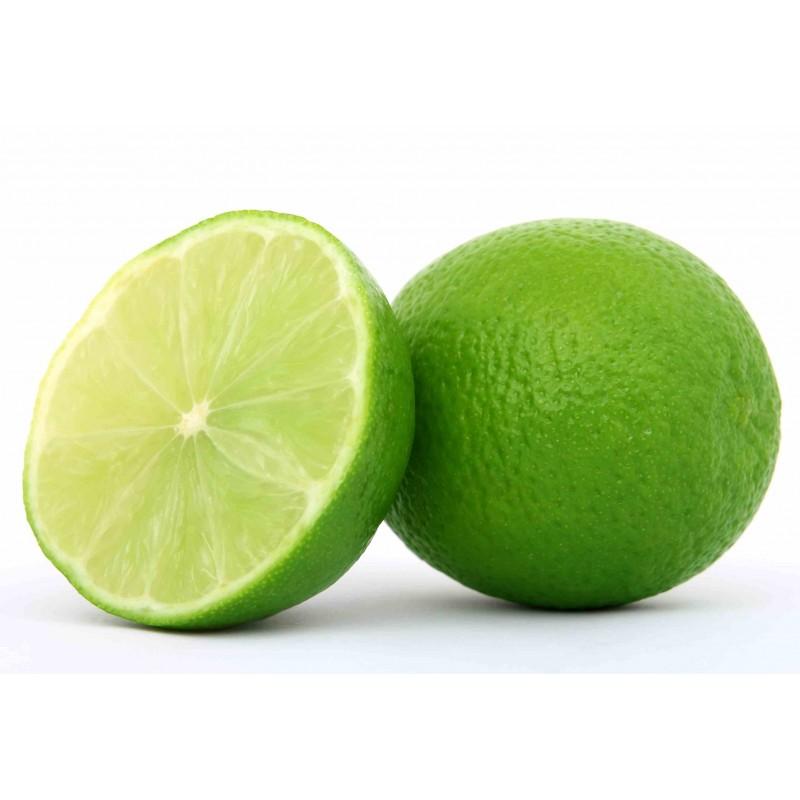 Lemon Suppliers
